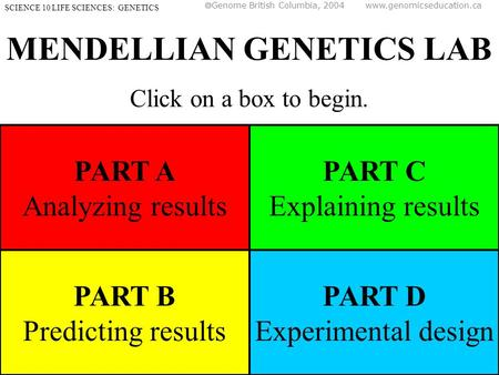 MENDELLIAN GENETICS LAB Click on a box to begin. SCIENCE 10 LIFE SCIENCES: GENETICS PART A Analyzing results PART B Predicting results PART C Explaining.