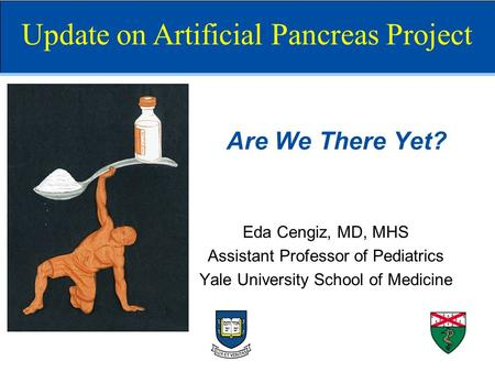 Are We There Yet? Eda Cengiz, MD, MHS Assistant Professor of Pediatrics Yale University School of Medicine Update on Artificial Pancreas Project.