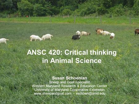 ANSC 420: Critical thinking in Animal Science Susan Schoenian Sheep and Goat Specialist Western Maryland Research & Education Center University of Maryland.