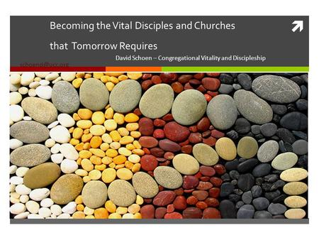 Becoming the Vital Disciples and Churches that Tomorrow Requires David Schoen – Congregational Vitality and Discipleship