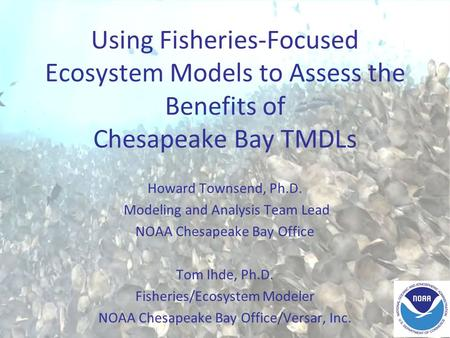 Using Fisheries-Focused Ecosystem Models to Assess the Benefits of Chesapeake Bay TMDLs Howard Townsend, Ph.D. Modeling and Analysis Team Lead NOAA Chesapeake.