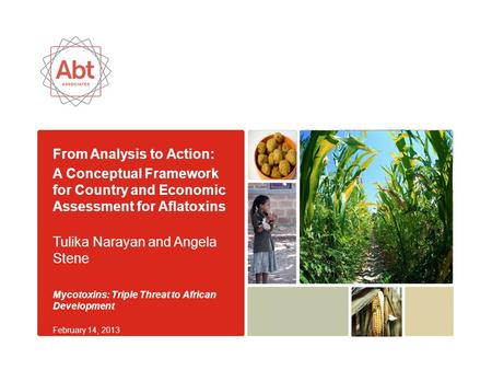 From Analysis to Action: A Conceptual Framework for Country and Economic Assessment for Aflatoxins Tulika Narayan and Angela Stene Mycotoxins: Triple Threat.