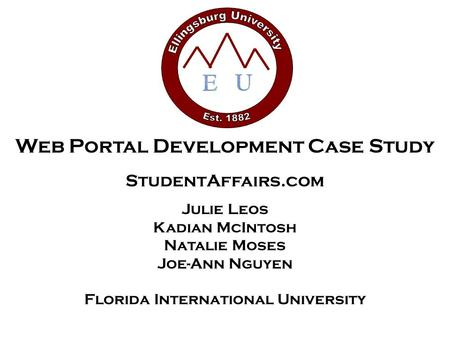 Web Portal Development Case Study StudentAffairs.com Julie Leos Kadian McIntosh Natalie Moses Joe-Ann Nguyen Florida International University.