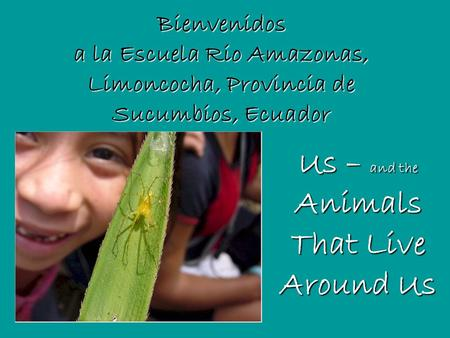 Bienvenidos a la Escuela Rio Amazonas, Limoncocha, Provincia de Sucumbios, Ecuador Us – and the Animals That Live Around Us.