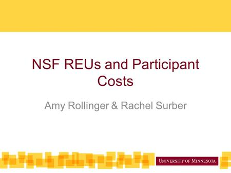 NSF REUs and Participant Costs Amy Rollinger & Rachel Surber.