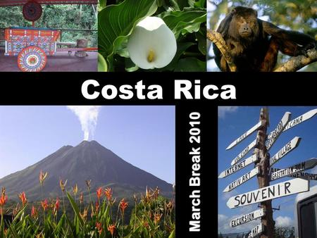 Costa Rica March Break 2010. Fly to Costa Rica Arrive in San José, the capital Meet your bilingual guide Private motor coach to hotel COSTA RICA: MARCH.
