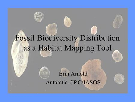 Fossil Biodiversity Distribution as a Habitat Mapping Tool Erin Arnold Antarctic CRC/IASOS.