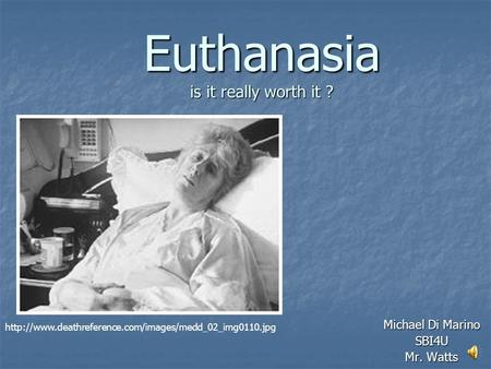 Euthanasia is it really worth it ? Michael Di Marino SBI4U Mr. Watts
