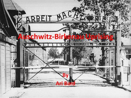 Auschwitz-Birkenau Uprising By Ari Bard. Background of Auschwitz-Birkenau Auschwitz-Birkenau was considered the most notorious death camp in the Third.