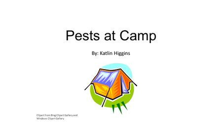 Pests at Camp By: Katlin Higgins Clipart from Bing Clipart Gallery and Windows Clipart Gallery.