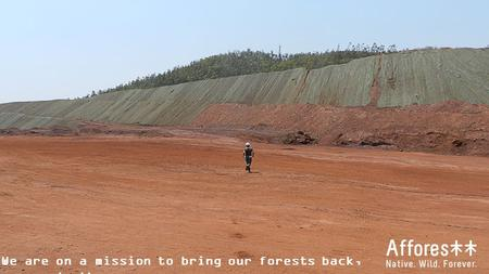 We are on a mission to bring our forests back, we create them..