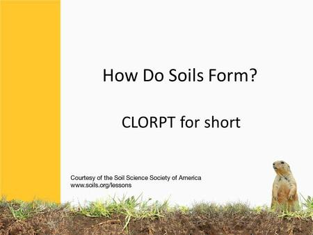 How Do Soils Form? CLORPT for short. Soils differ from one part of the world to another, even from one part of a backyard to another. They differ because.