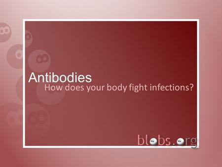 Antibodies How does your body fight infections?. Introduction The body has to be ready to fight off anything which could do damage to it One of the ways.