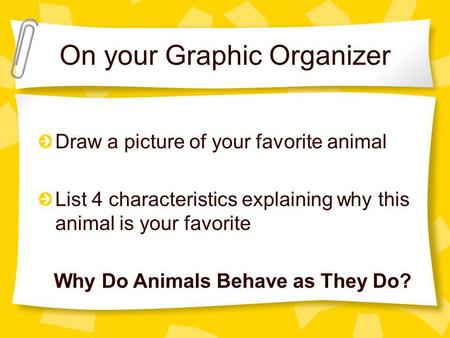 On your Graphic Organizer Draw a picture of your favorite animal List 4 characteristics explaining why this animal is your favorite Why Do Animals Behave.