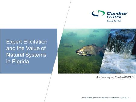 Ecosystem Service Valuation Workshop, July 2013 C Expert Elicitation and the Value of Natural Systems in Florida Barbara Wyse, Cardno ENTRIX.