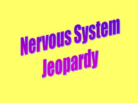 Nervous System Jeopardy.