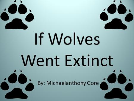 If Wolves Went Extinct By: Michaelanthony Gore Wolf Facts The wolf is at the top of the food chain because it is a fierce predator. A wolf eats about.