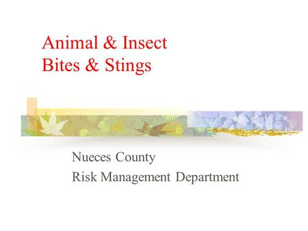 Animal & Insect Bites & Stings Nueces County Risk Management Department.