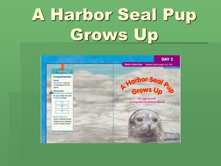 A Harbor Seal Pup Grows Up. examines  When a person examines something, she looks at it carefully.  He examines the toy to see if it is broken.  Name.