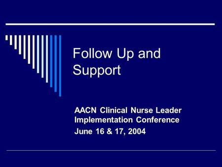 Follow Up and Support AACN Clinical Nurse Leader Implementation Conference June 16 & 17, 2004.