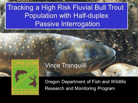 Title Tracking a High Risk Fluvial Bull Trout Population with Half-duplex Passive Interrogation Vince Tranquilli Oregon Department of Fish and Wildlife.