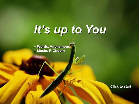 It's up to You -- Words: Anonymous -- Music: F. Chopin It's up to You -- Words: Anonymous -- Music: F. Chopin Click to start.