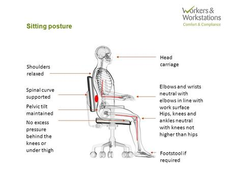 Sitting posture Head carriage Spinal curve supported Pelvic tilt maintained Shoulders relaxed Elbows and wrists neutral with elbows in line with work surface.
