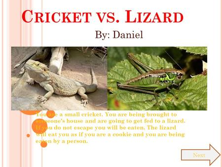 C RICKET VS. L IZARD You are a small cricket. You are being brought to someone's house and are going to get fed to a lizard. If you do not escape you.