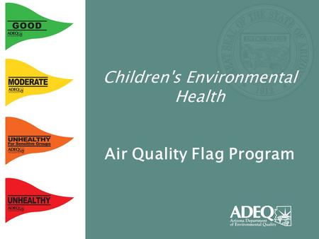 Children's Environmental Health Air Quality Flag Program.