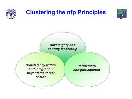 Sovereignty and country leadership Consistency within and integration beyond the forest sector Partnership and participation Clustering the nfp Principles.