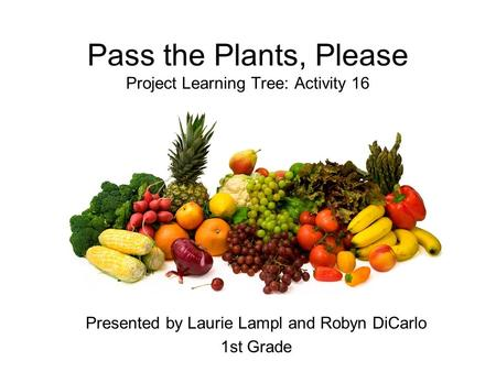 Pass the Plants, Please Project Learning Tree: Activity 16 Presented by Laurie Lampl and Robyn DiCarlo 1st Grade.
