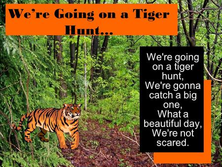 We're Going on a Tiger Hunt…