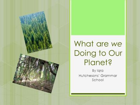 What are we Doing to Our Planet? By Iqra Hutchesons' Grammar School.