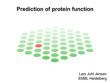 Prediction of protein function Lars Juhl Jensen EMBL Heidelberg.
