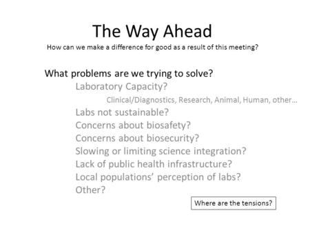 The Way Ahead How can we make a difference for good as a result of this meeting? What problems are we trying to solve? Laboratory Capacity? Clinical/Diagnostics,