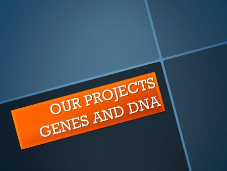 OUR PROJECTS GENES AND DNA. HOW DID WE START? Paragraph headings We went through the Biology File, read the text, looked up new words and answered the.