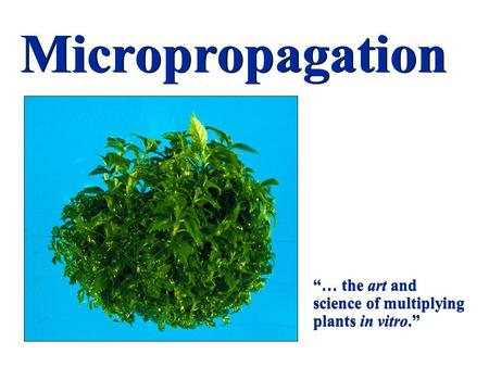 "Micropropagation ""… the art and science of multiplying plants in vitro."""