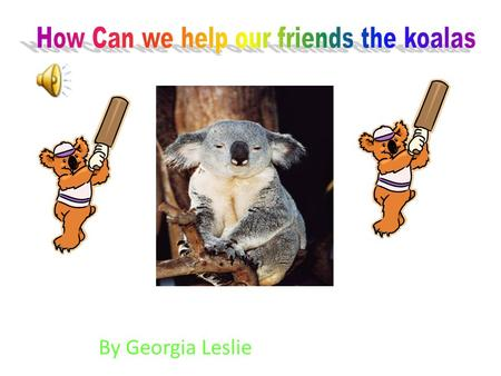 By Georgia Leslie. The koala lives in Australia in the eucalypt forests of eastern and south eastern Australia in the eucalypts trees. Baby koalas drink.