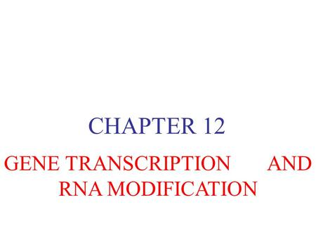 CHAPTER 12 GENE TRANSCRIPTION AND RNA MODIFICATION.