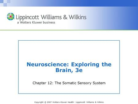 Copyright © 2007 Wolters Kluwer Health | Lippincott Williams & Wilkins Neuroscience: Exploring the Brain, 3e Chapter 12: The Somatic Sensory System.