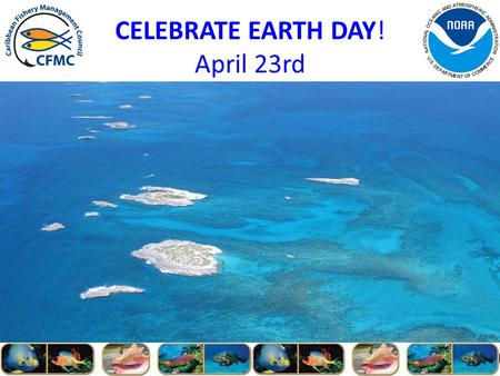 CELEBRATE EARTH DAY! April 23rd. Outreach and Education Advisory Panel (OEAP) Report to the Council 149 th CFMC Regular Meeting St.Croix, USVI.