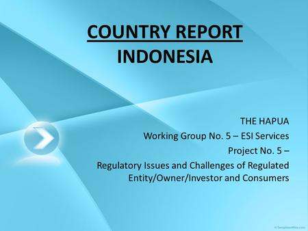 COUNTRY REPORT INDONESIA THE HAPUA Working Group No. 5 – ESI Services Project No. 5 – Regulatory Issues and Challenges of Regulated Entity/Owner/Investor.
