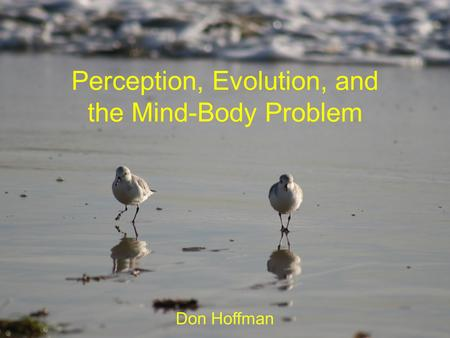 Perception, Evolution, and the Mind-Body Problem Don Hoffman.