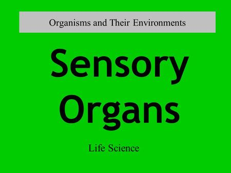 Organisms and Their Environments Life Science Sensory Organs.