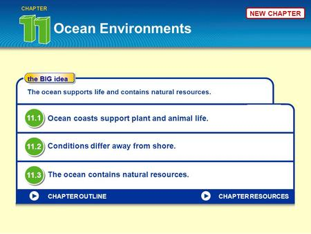 Ocean Environments CHAPTER the BIG idea CHAPTER OUTLINE The ocean supports life and contains natural resources. Ocean coasts support plant and animal life.