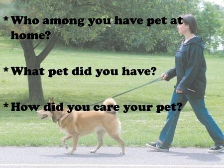 *Who among you have pet at home? *What pet did you have? *How did you care your pet?