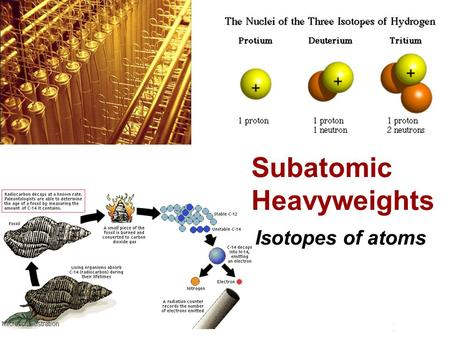 Subatomic Heavyweights