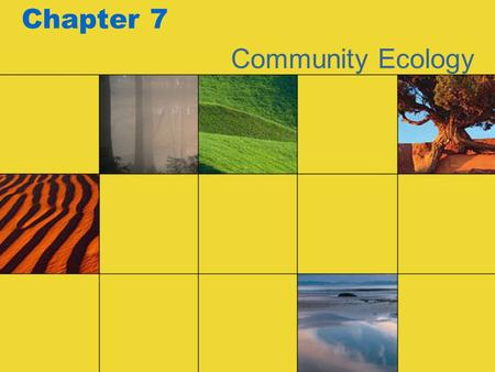 Chapter 7 Community Ecology.