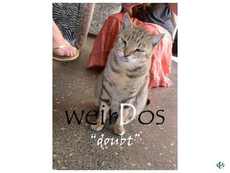 "D weirDos ""doubt"" Certainty Doubt Je sais que… (I know that…) Je dis que… (I say that…) Je doute que… (I doubt that…)"
