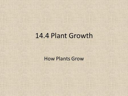 14.4 Plant Growth How Plants Grow. Objectives By the end of the lesson, students will be able to explain how plant growth and animal growth differ.